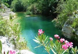 Cava Grande 5 Riserve Naturali   Nature reserves, fauna